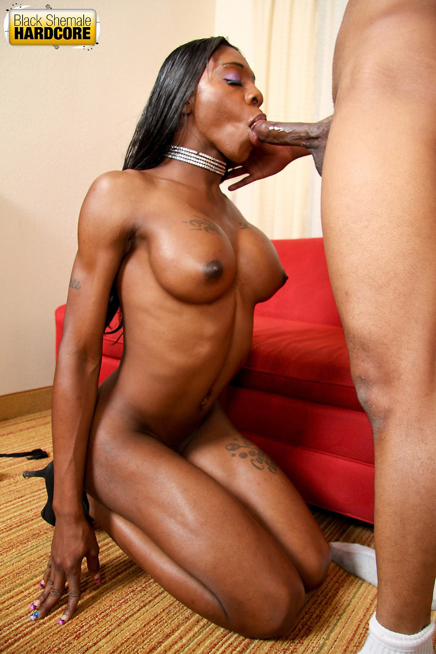 Nj ebony escorts