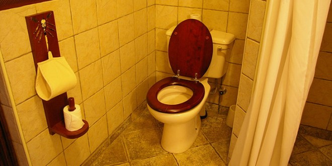 Decorate Your Toilet
