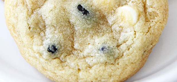 blueberry pudding cookies