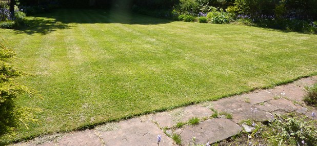 how to use lawn