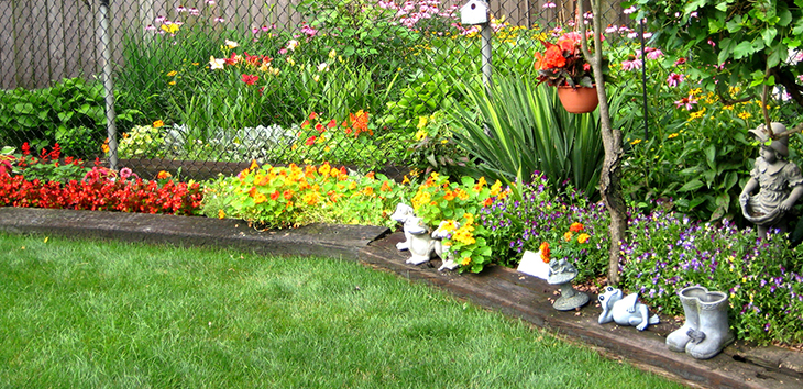 5 Types of Plants To Choose For Your Small Garden ... on Tree Planting Ideas For Backyard id=73421