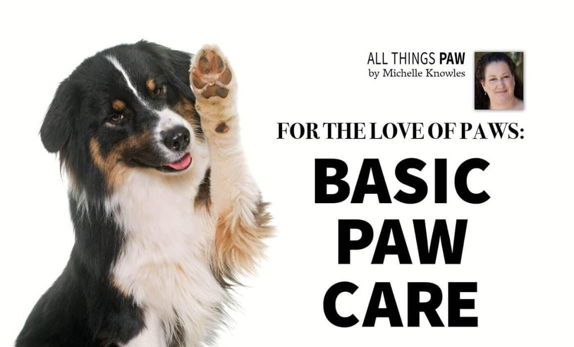 basic paw care