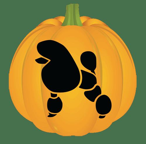 Poodle Pumpkin