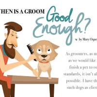 When Is A Good Groom Good Enough?