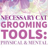 Necessary Cat Grooming Tools: Physical & Mental
