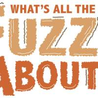 What's All the Fuzz About?