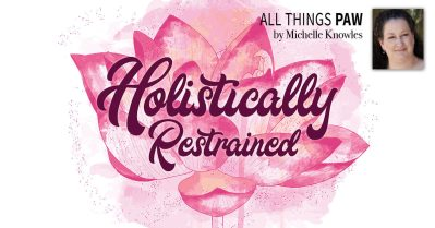 hollistically restrained