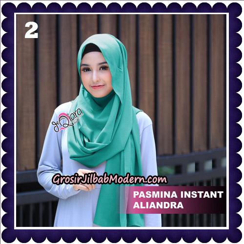 Jilbab Pashmina Instant Aliandra Original By deQiara Hijab Brand No 2