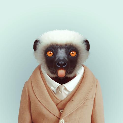 Zoo Portraits | Yago Partal | GROSSARTIGo1_500