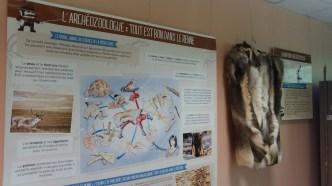 Laboratoire de l'archéozoologue © N. Ferrer