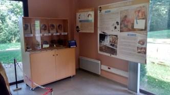 Laboratoire du Paléoanthropologue © N. ferrer