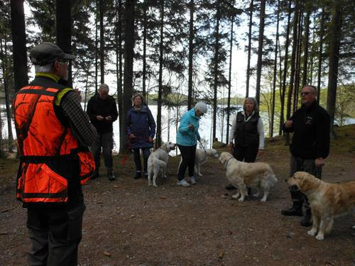 Hundägare med sina hundar i skogen.