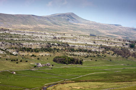 Whernside, looking surprisingly more formidable than what it really is...unless you do it from Chapel le Dale, then it's a pig!
