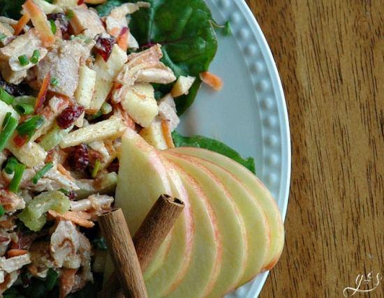 Autumn Spiced Turkey Salad