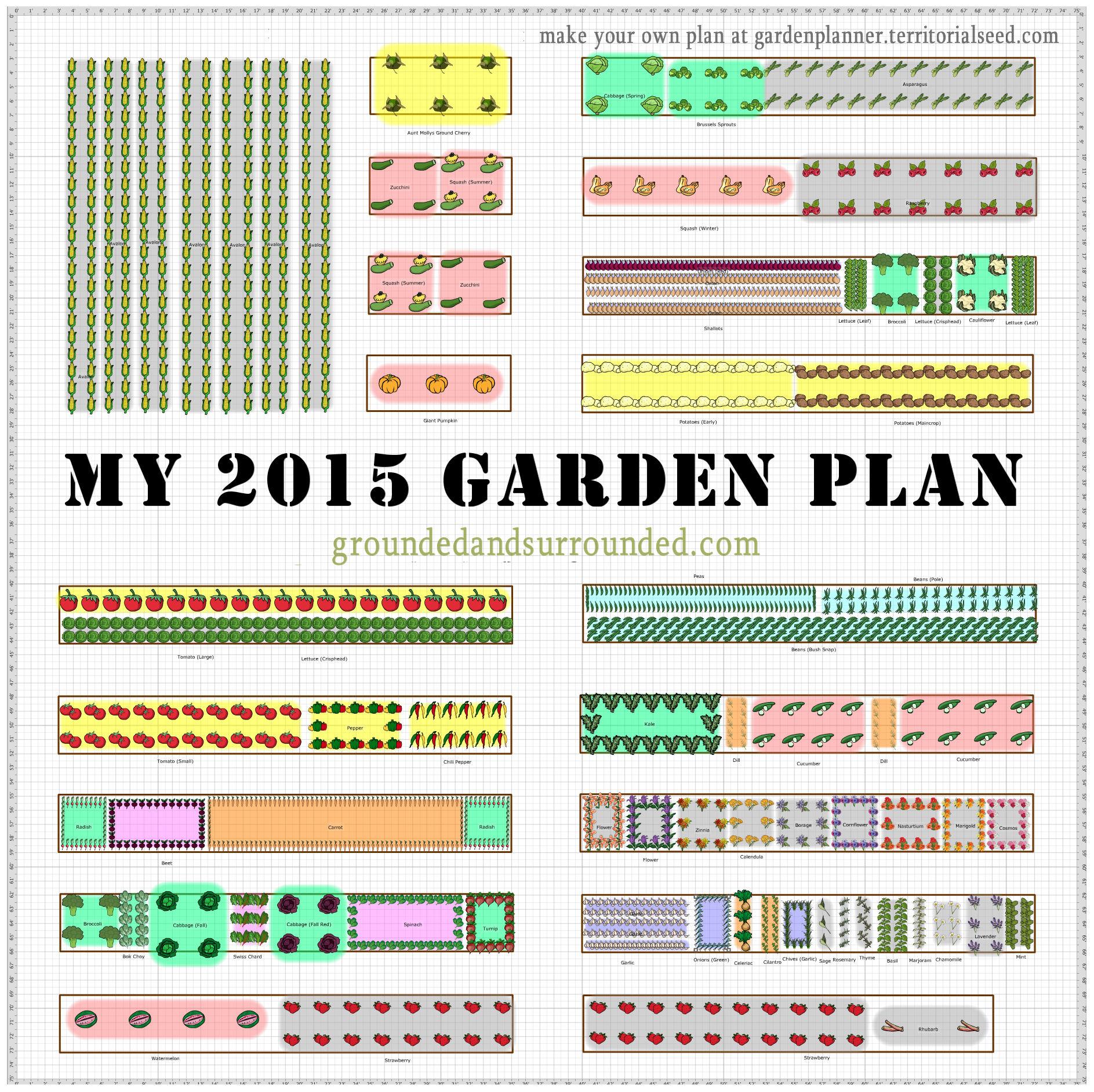 Efficient Vegetable Garden Layout