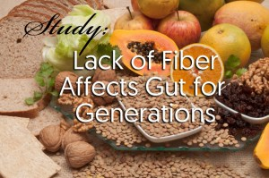 Study: Lack of Fiber Affects Gut for Generations
