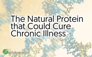 The Natural Protein That Could Cure Most Chronic Illnesses
