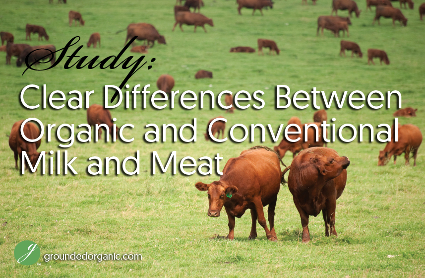 organic milk and meat