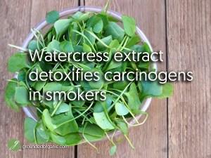 Watercress extract detoxifies carcinogens in smokers