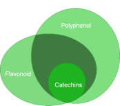 antioxidant family