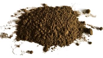 fine hojicha powder