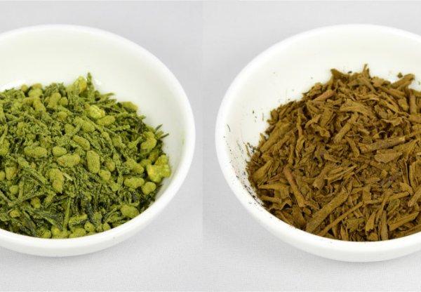 genmaicha squared and hojicha squared tea