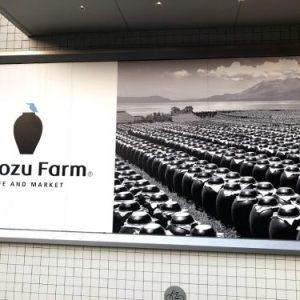 Black vinegar farm
