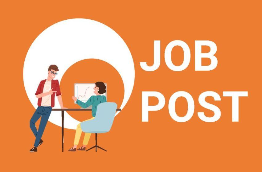 Job: Student Internship/Job