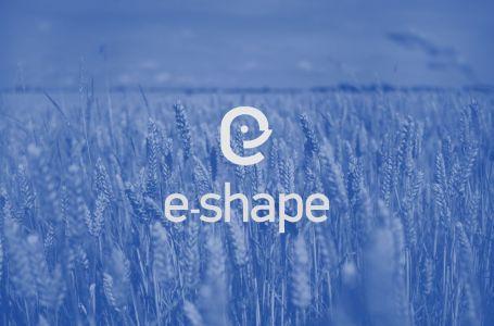 e-shape project logo