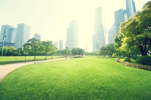 Urban Green Areas