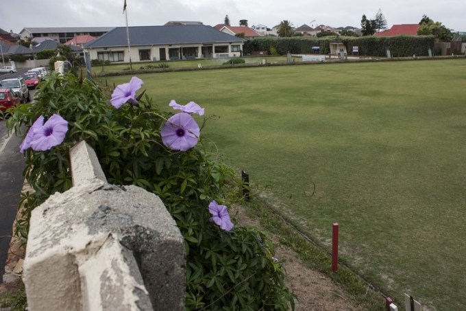 Photo of a bowling green