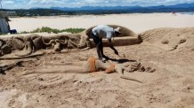 Covid-19 beach closures hit small businesses in Plettenberg Bay