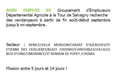 un job d'été de fin Aout à mi septembre en exploitation agricole