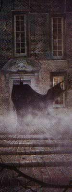 Batman: Arkham Asylum - Batman