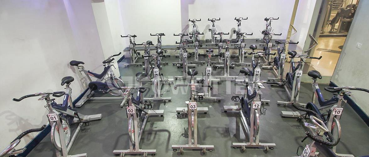 Powerhouse Exercise Bench