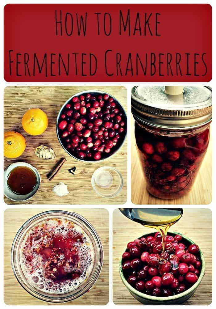 http://i1.wp.com/www.growforagecookferment.com/wp-content/uploads/2015/11/fermented-cranberries-collage.jpg Ferment