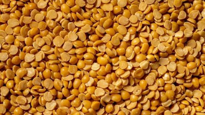 can-pigeon-peas-kill-two-birds-with-one-stone