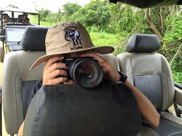 Elephant photographer