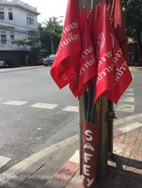Safety flags - for crossing the road with!