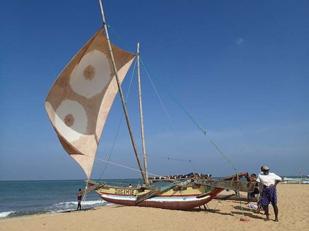 Negombo sailing