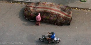 This woman wrapped her car up in a big blanket every day.