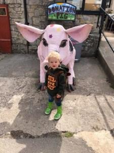 Baby bear and pig