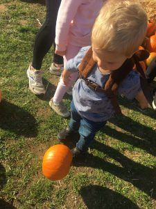 kicking the pumpkins