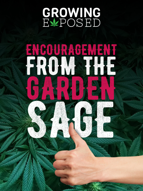 Word's Of Encouragement From The Garden Sage