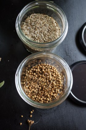 Seed Saving | Dirt to Dinner Guide | Growing Home