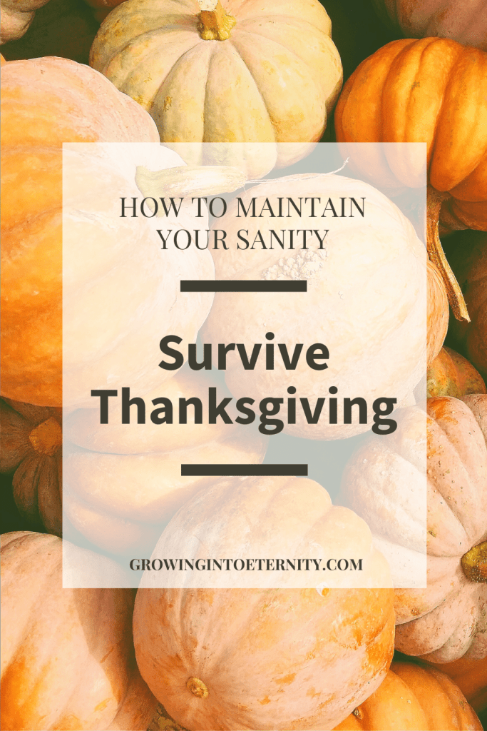 How to Maintain Your Sanity and Survive Thanksgiving Dinner