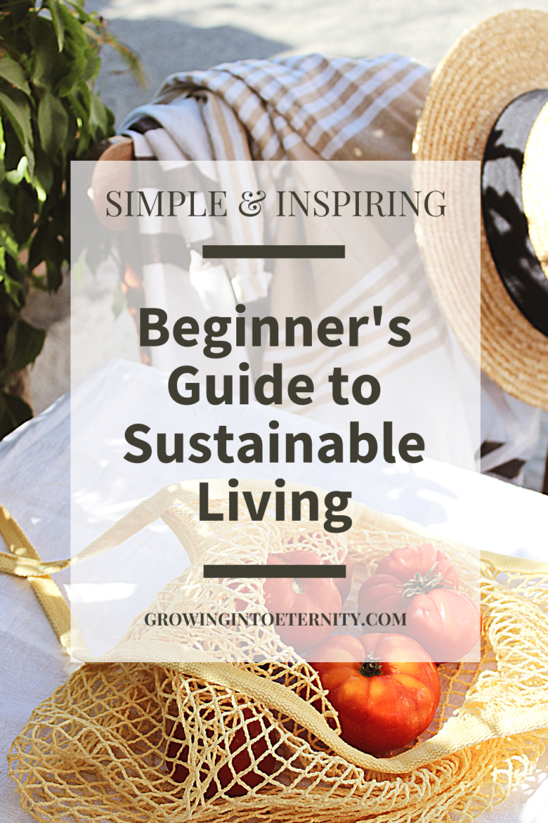 A simple and inspiring beginner's guide to sustainable living