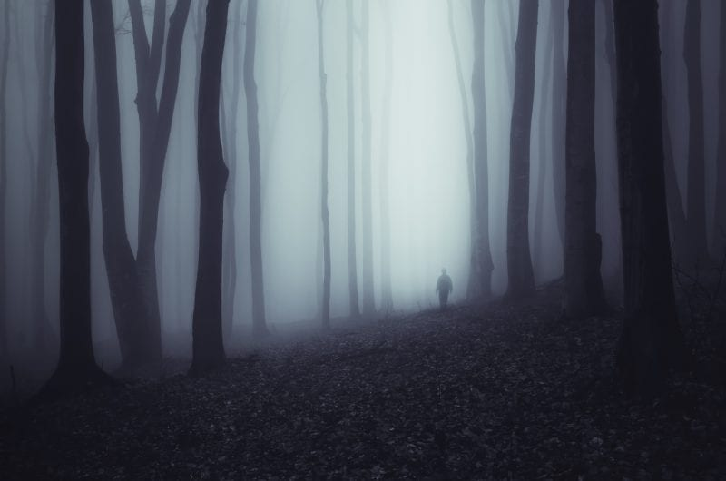 How to Feel Safe in a Scary World