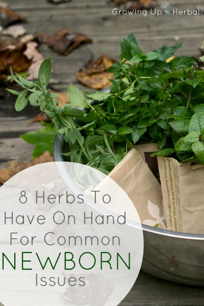 8 Herbs To Have On Hand For Common Newborn Issues | GrowingUpHerbal.com