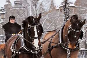 Christmas Market at the Royal Stables